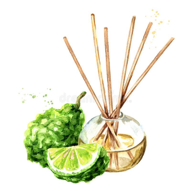 Bergamotten-Aromaflüssigkeit in einer Glasflasche mit Stöcken und Frucht erfrischungsmittel gezeichnete Illustration des Aquarell stock abbildung