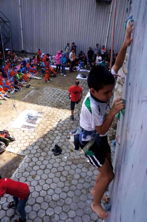 Bergbeklimming voor gehandicapten stock fotografie