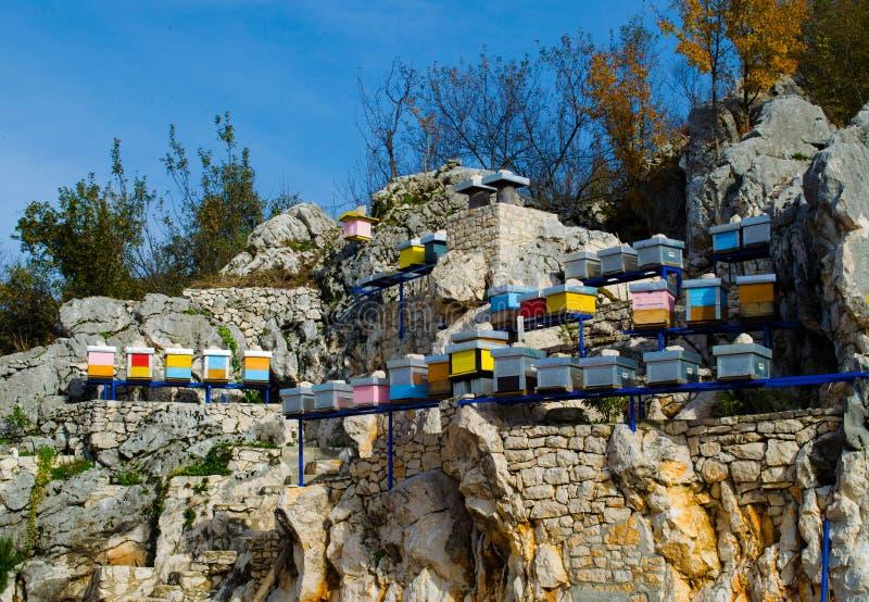 Bergbijenkorven op Rotsen die in Montenegro worden geplaatst Organisch Honey Production stock foto