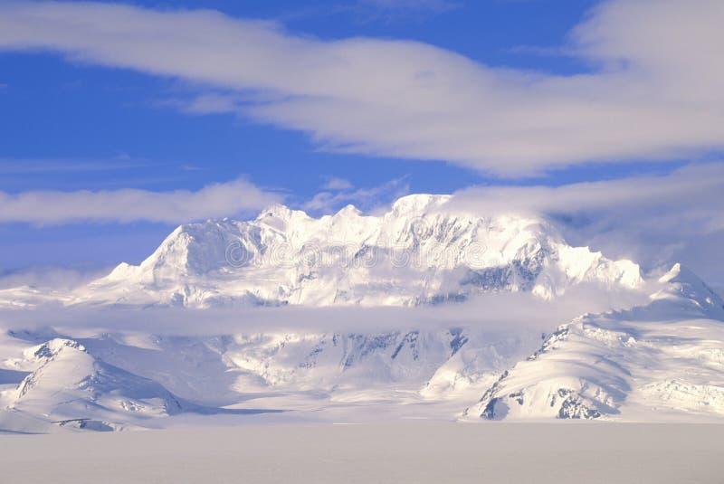 Bergblast i St Elias National Park och sylt, Wrangell berg, Wrangell, Alaska arkivbilder
