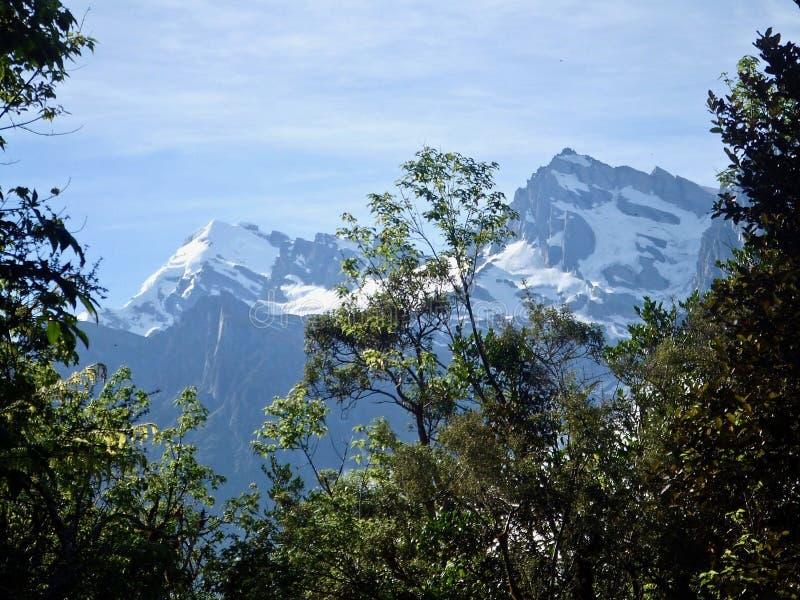 Bergblick in Neuseeland auf der gehenden Bahn Copland lizenzfreies stockfoto