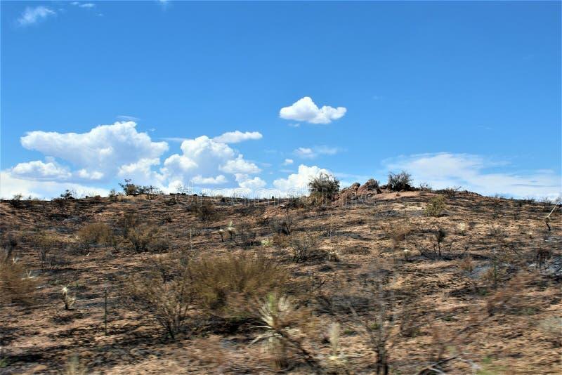 Bergbrand in Bartlett Lake Reservoir, het Nationale Bos van Tonto, Maricopa-Provincie, Staat van Arizona, Verenigde Staten royalty-vrije stock foto