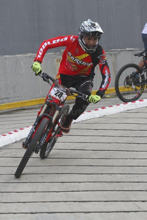 Bergcyklist fotografering för bildbyråer