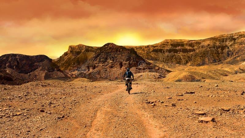 Bergcyklist på solnedgången i en öken royaltyfri bild