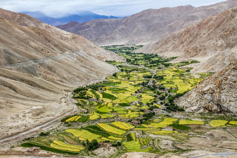 Bergdal och by och flod-Ladakh, Indien fotografering för bildbyråer