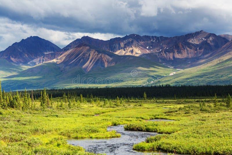 Download Berge in Alaska stockfoto. Bild von park, schroff, amerika - 90227792