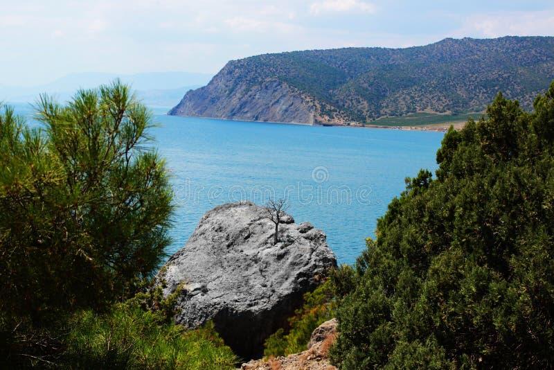 Berge bedeckt mit Gras und Waldsommer, die Republik von Krim interessante Steine einer seltsamen Form infolge vieler lizenzfreie stockfotografie