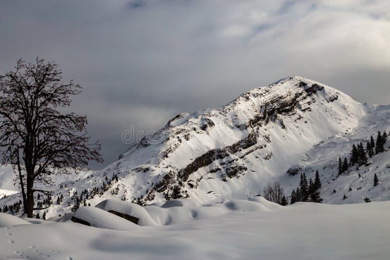 Berge bedeckt mit Schnee und durch Wolken umgeben stockfotos