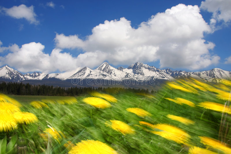 Berge hohes Tatras, Slowakei stockbilder