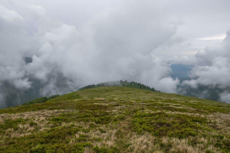 Berge im Nebel stockfotografie