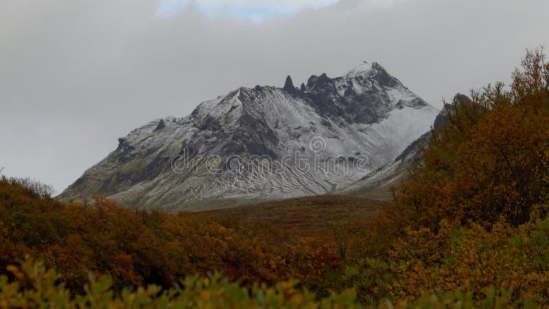 Berge in Island lizenzfreies stockbild