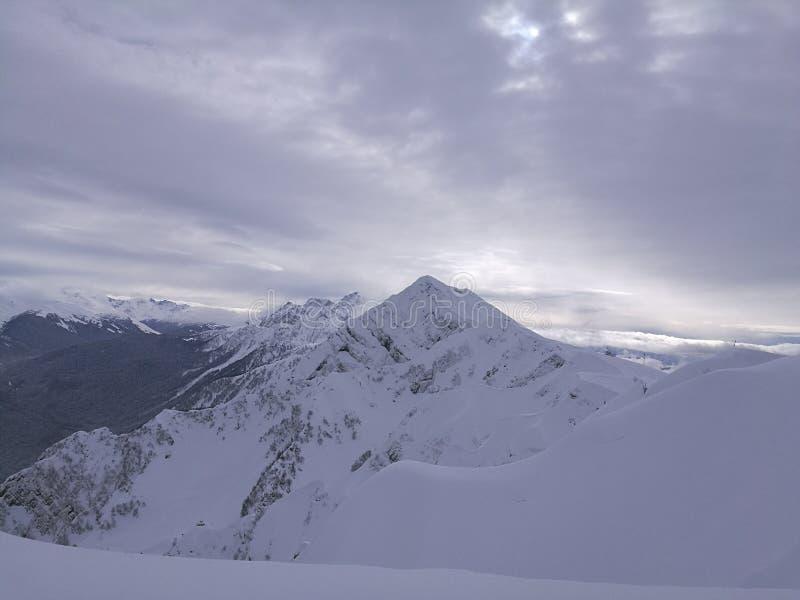 Berge in Sochi stockfotos