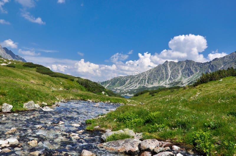 Berge Tatra lizenzfreie stockfotos