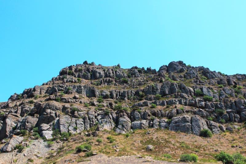 Berge teilweise bedeckt mit Waldsommer, die Republik von Krim lizenzfreie stockfotografie