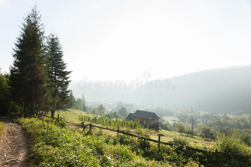 Berge Ukraine Karpaten im Nebel, grünes Sommertal stockbilder