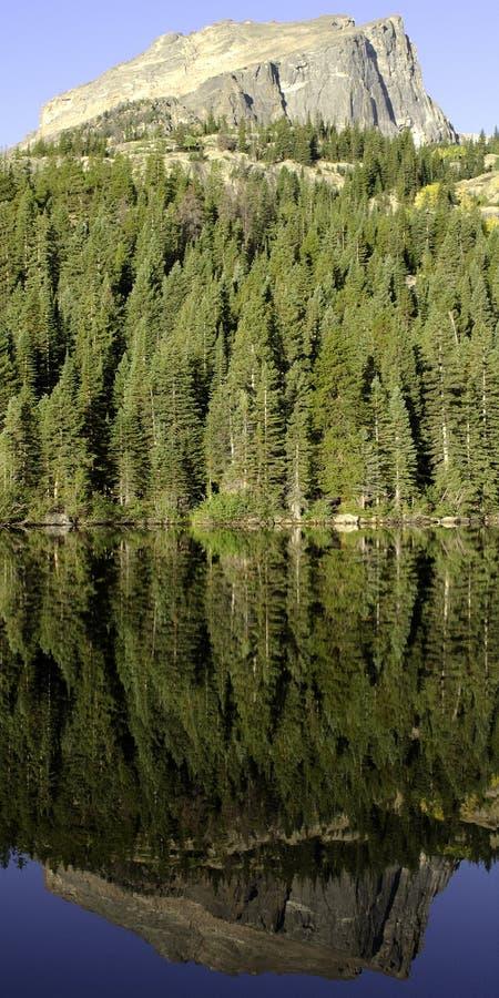 Berge und Bäume im stillen See vektor abbildung