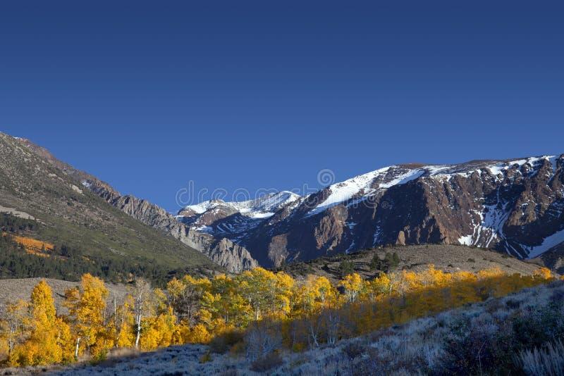 Berge und Espen lizenzfreies stockbild