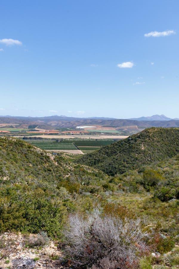 Berge und Obstgarten im Hintergrund stockbild