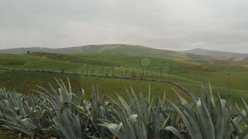 Berge und Stadtregion fes, Marokko stockbilder