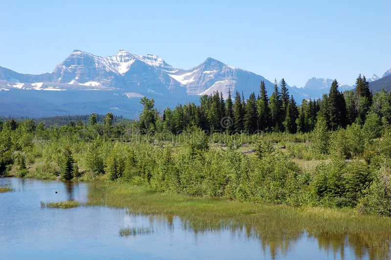 Berge und Wälder lizenzfreies stockfoto