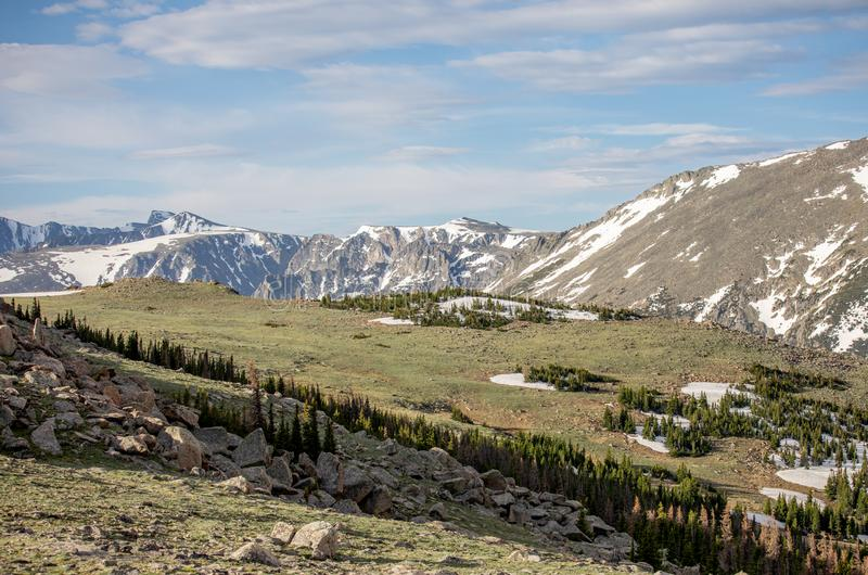 Berge und Wiese an einem Sommer-Tag in Rocky Mountain National Park stockfotos