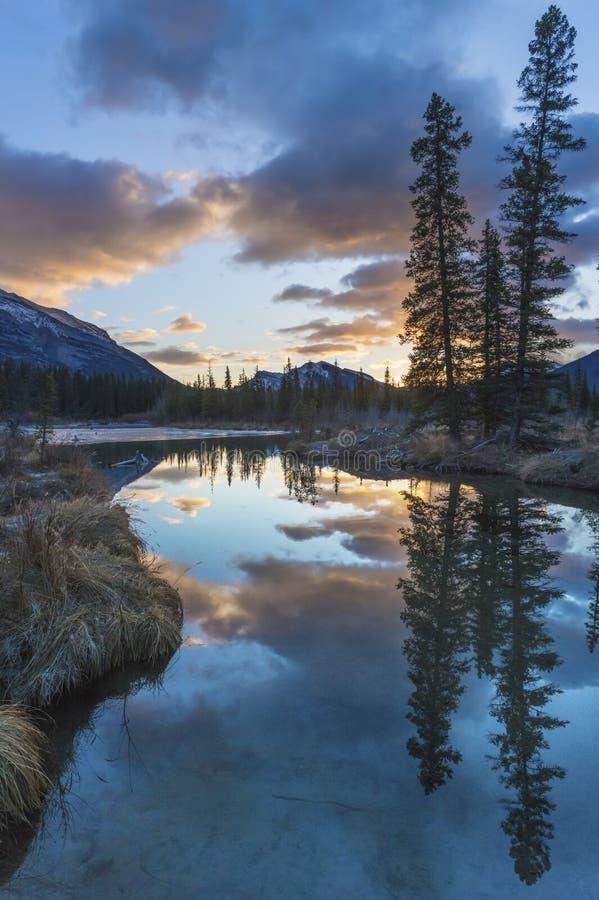 Berge und Winterkiefern reflektierten sich im Glazial- Nebenfluss des schönen Türkises bei Sonnenaufgang stockfotografie