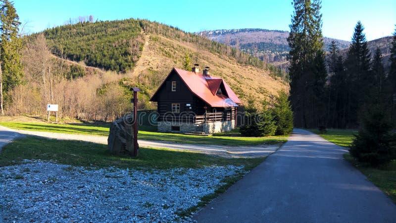 Bergen stock foto's