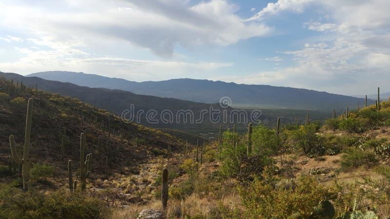 Bergen in Arizona stock afbeelding