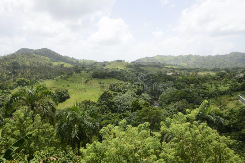 Bergen in de Dominicaanse Republiek royalty-vrije stock afbeelding
