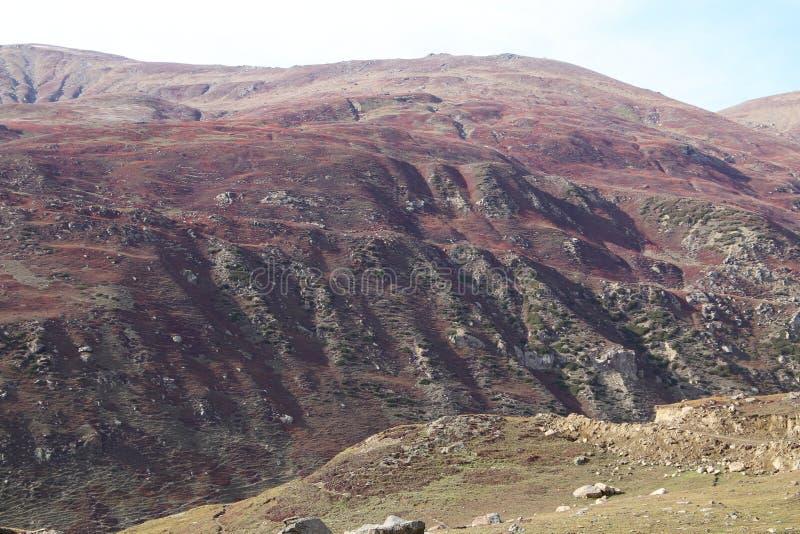 Bergen in de herfst met bruin en roodachtig gras onder bewolkte hemel stock foto