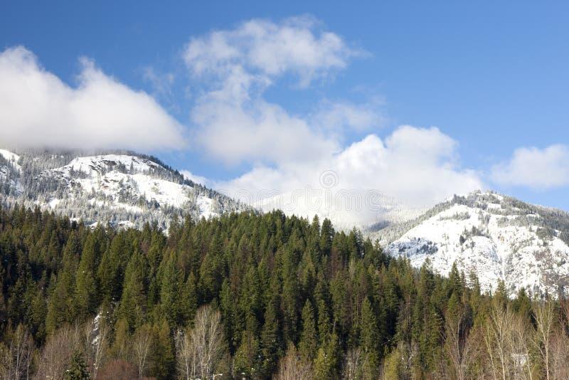 Bergen in de winter. royalty-vrije stock foto's