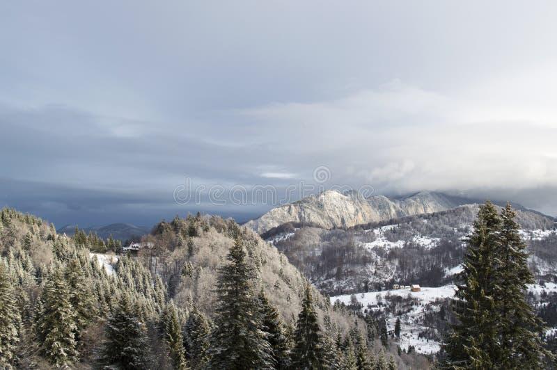 Bergen in de winter stock foto's