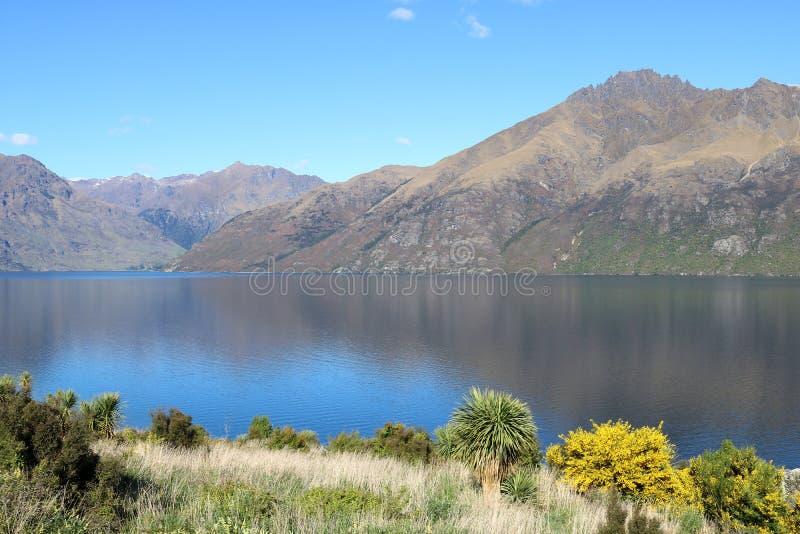 Bergen en bezinningen, Meer Wakatipu, Otago NZ royalty-vrije stock afbeelding