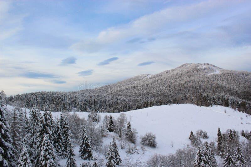 Bergen en bos onder de sneeuw De scène van het de wintersprookje stock afbeeldingen