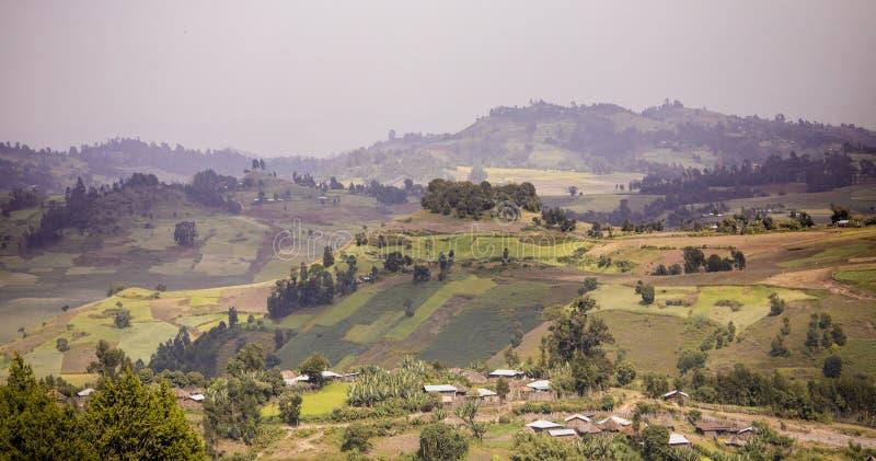 Bergen en landbouwbedrijven in de hooglanden van Ethiopië royalty-vrije stock foto's