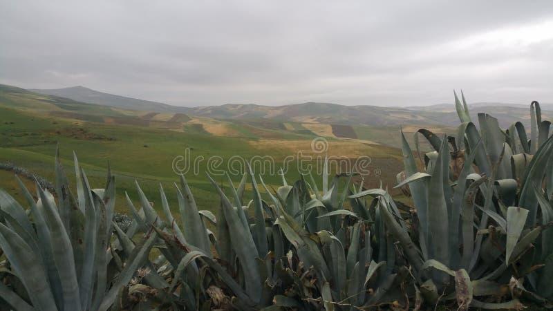 Bergen en stadsgebied fes, Marokko royalty-vrije stock afbeeldingen