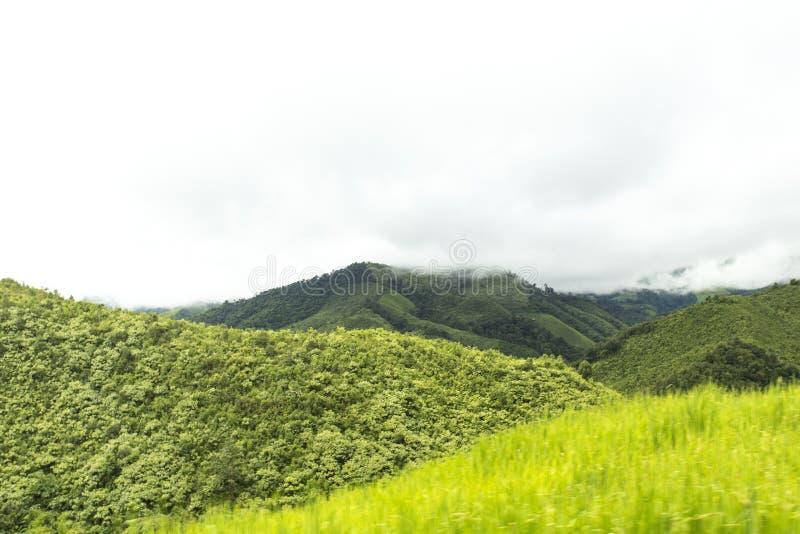 Bergen en wildernis in Thailand (van Nan) royalty-vrije stock fotografie