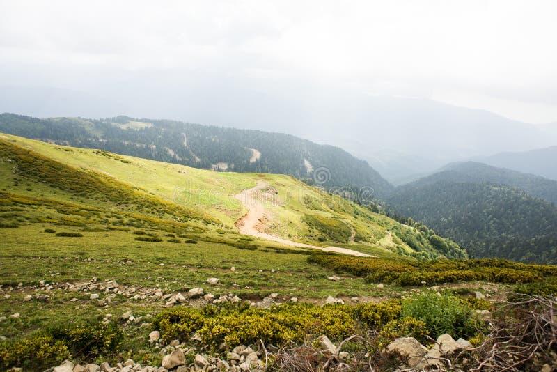 Bergen met Alpiene Weiden en Groen Bos in Sotchi royalty-vrije stock afbeeldingen
