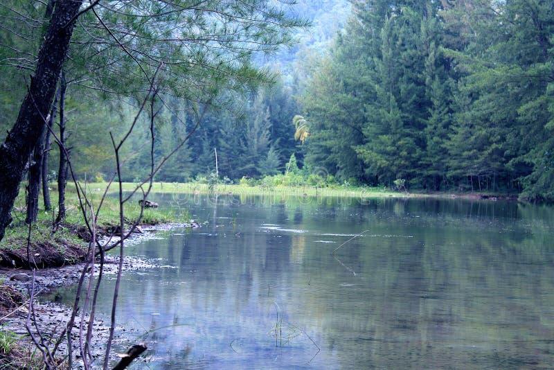Bergen met de rivier onderaan stock afbeeldingen