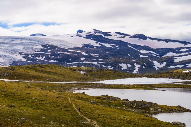Bergen met ijsgletsjer Weg Sognefjellet, Noorwegen royalty-vrije stock foto's