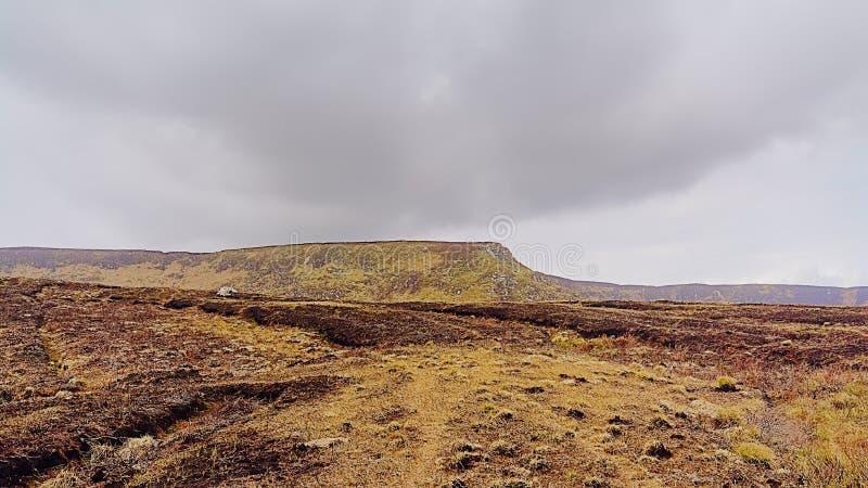 Bergen met peatland in het nationale park van Wicklow stock afbeelding