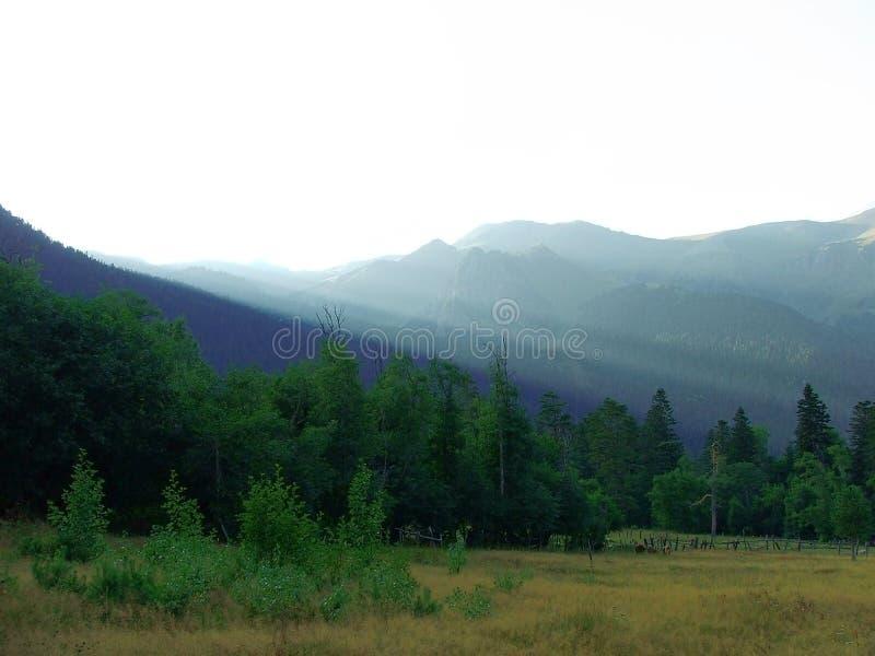 In bergen na een regen stock afbeeldingen