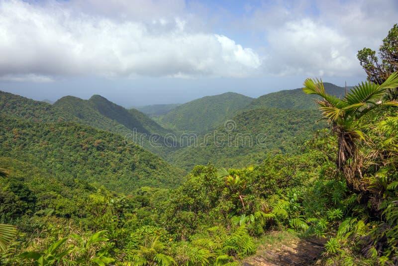 Bergen op Caraïbisch Eiland Dominica royalty-vrije stock afbeeldingen
