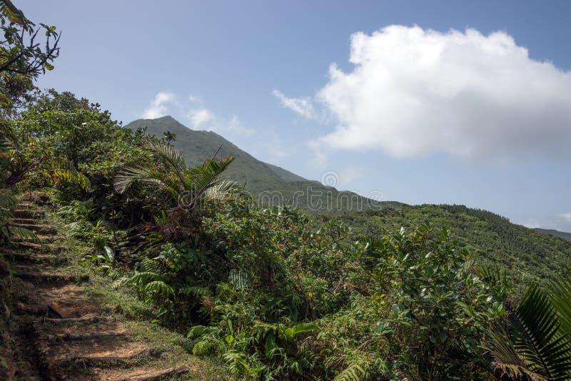 Bergen op Caraïbisch Eiland Dominica royalty-vrije stock foto's