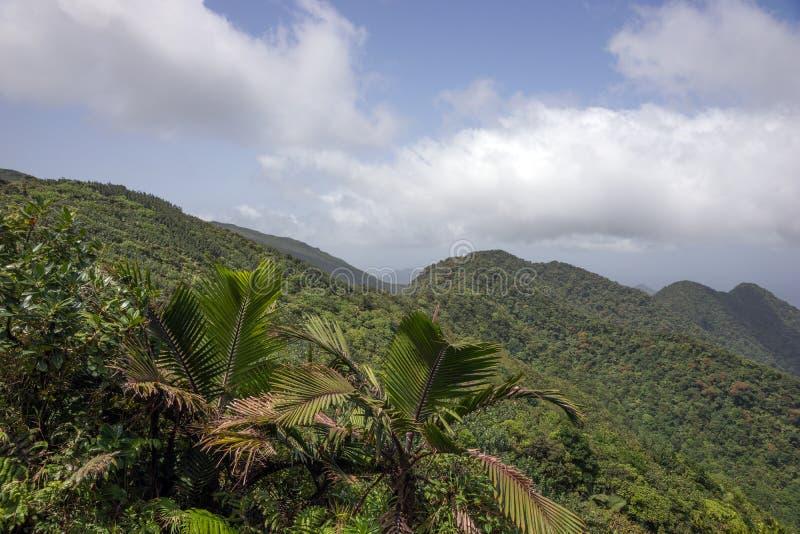 Bergen op Caraïbisch Eiland Dominica stock foto