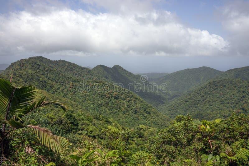 Bergen op Caraïbisch Eiland Dominica stock fotografie