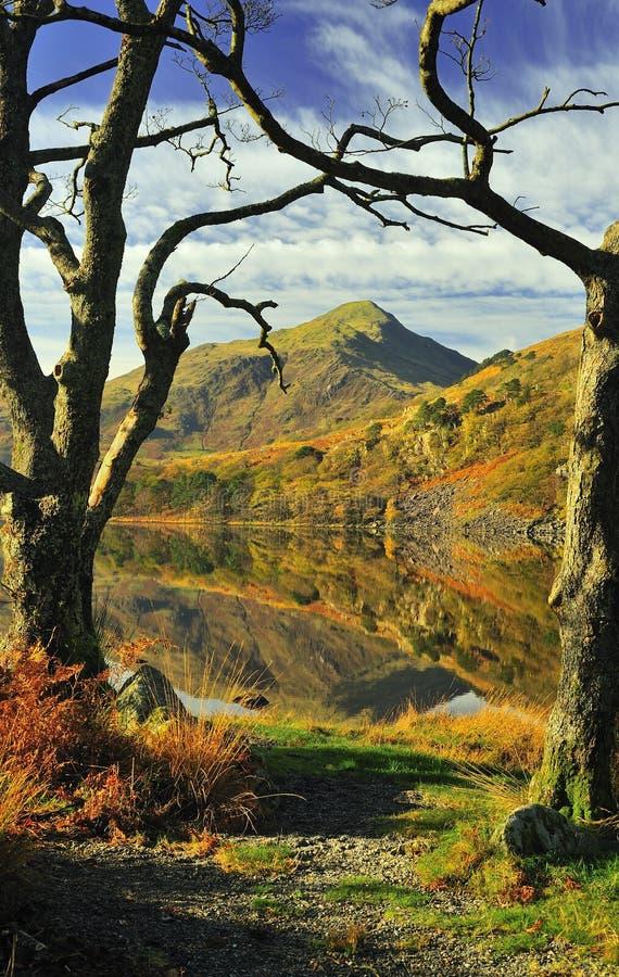 Bergen over Llyn Gynant, Snowdonia royalty-vrije stock foto