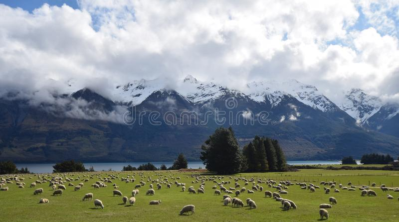 Bergen, rivieren, wolken & schapen stock afbeeldingen