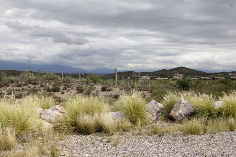 Bergen in Tucson, Arizona royalty-vrije stock foto