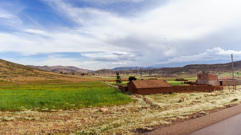 Bergen van Bolivië, altiplano stock afbeeldingen